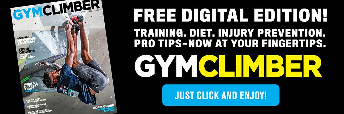 gym climber digital banner website large